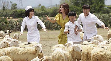 Viet Huong tiep tuc chay dua phim Tet sau liveshow de doi - Anh 1