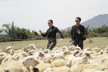 Viet Huong tiep tuc chay dua phim Tet sau liveshow de doi - Anh 4