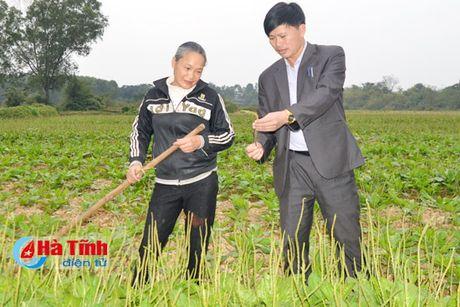 Thuoc quy cham soc suc khoe nhan dan - Anh 1