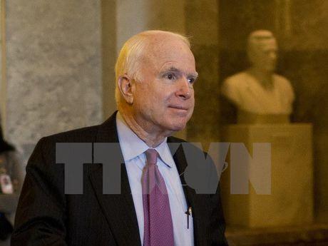 Thuong nghi sy John McCain tai dac cu - Anh 1