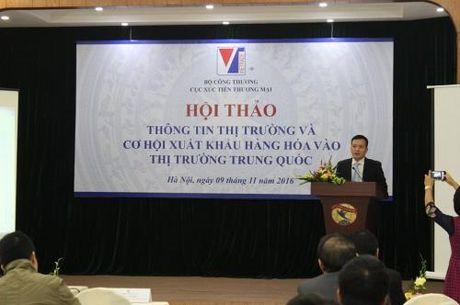 Cung cap thong tin thi truong Trung Quoc cho doanh nghiep - Anh 1