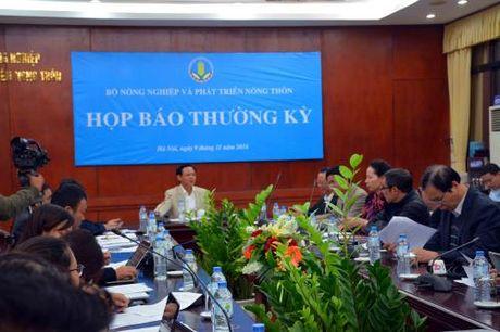 Nganh nong nghiep no luc khoi phuc san xuat - Anh 1