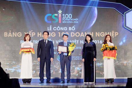 Cong bo Top 100 doanh nghiep phat trien ben vung Viet Nam 2016 - Anh 1