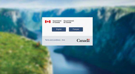 Website di tru Canada lien tuc 'sap' truoc su thang the cua Donald Trump - Anh 1