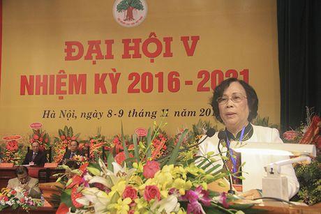 Nguyen Bo truong Pham Thi Hai Chuyen tro thanh Chu tich Hoi Nguoi cao tuoi - Anh 1