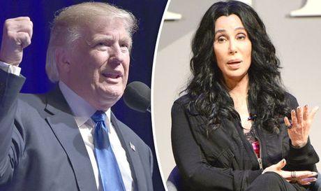 Cac ngoi sao bay to thai do khi Donald Trump thang cu Tong thong My - Anh 3
