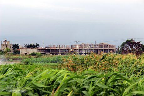 Ha Noi: Nga bo chung vi nghia trang moc sat nach - Anh 1