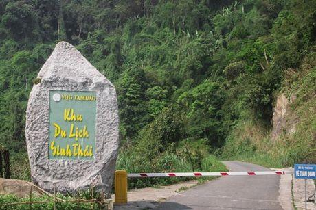 Mo rong duong di qua Vuon quoc gia Tam Dao - Anh 1