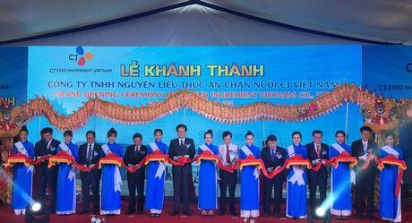 Tap doan CJ khanh thanh nha may thuc an chan nuoi tai Vung Tau - Anh 1