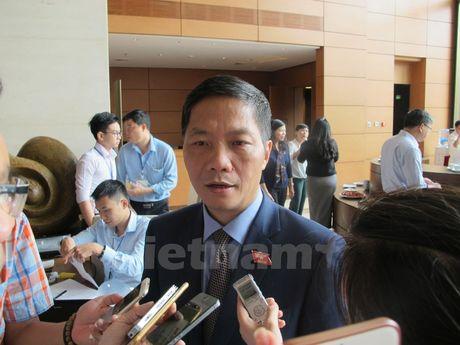 Bo truong Cong Thuong: Con qua som dua ra doan dinh lien quan den TPP - Anh 1
