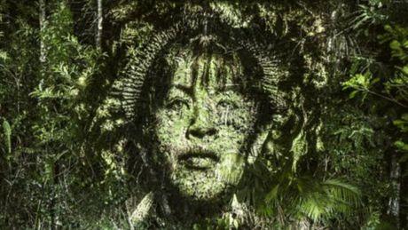 Kinh ngac bo tranh 've' tren cay trong rung Amazon - Anh 4
