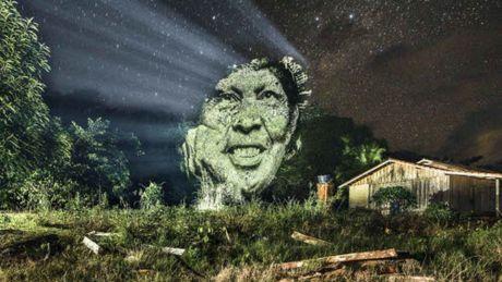 Kinh ngac bo tranh 've' tren cay trong rung Amazon - Anh 5