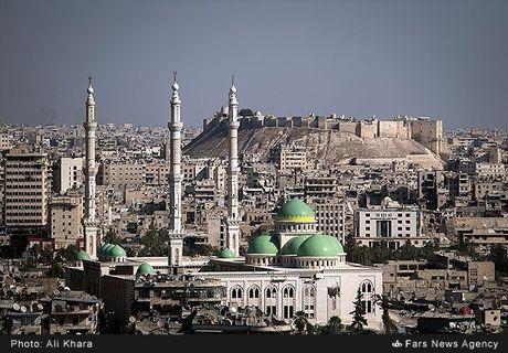 Canh binh yen hiem hoi o Aleppo trong chien tranh - Anh 1