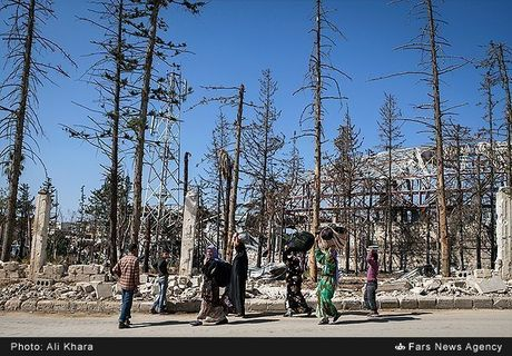 Canh binh yen hiem hoi o Aleppo trong chien tranh - Anh 2