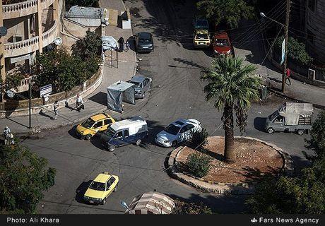 Canh binh yen hiem hoi o Aleppo trong chien tranh - Anh 3