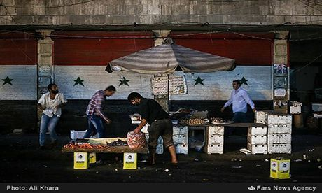 Canh binh yen hiem hoi o Aleppo trong chien tranh - Anh 5