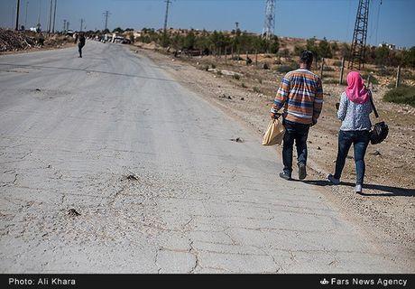 Canh binh yen hiem hoi o Aleppo trong chien tranh - Anh 9
