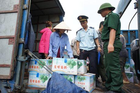 Tong cuc Hai quan cong bo duong day nong 19009299 - Anh 1