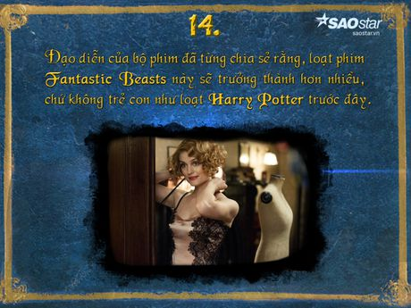15 dieu thu vi xung quanh 'Fantastic Beasts and Where to Find Them' - Anh 14