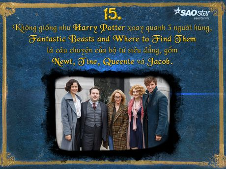 15 dieu thu vi xung quanh 'Fantastic Beasts and Where to Find Them' - Anh 15