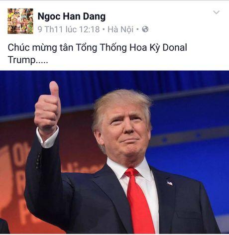 Sao Viet xon xao khi ong Donald Trump dac cu Tong thong My - Anh 4
