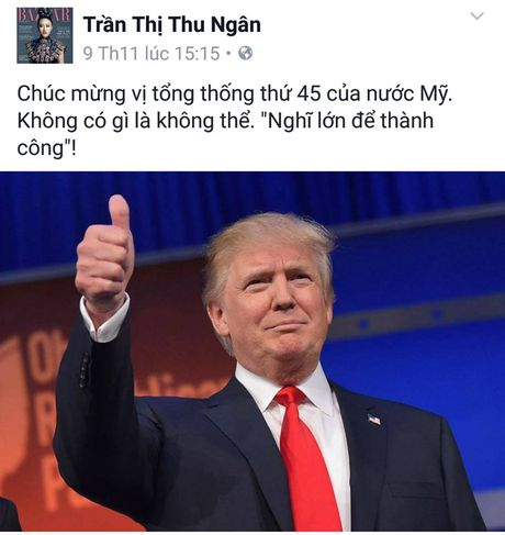 Sao Viet xon xao khi ong Donald Trump dac cu Tong thong My - Anh 7