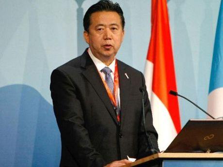 Thu truong Bo Cong an Trung Quoc duoc bau lam Chu tich Interpol - Anh 1