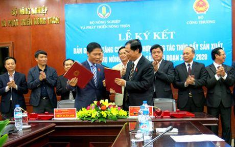 Lien bo Cong Thuong, Nong nghiep hop tac tieu thu nong lam thuy san - Anh 1