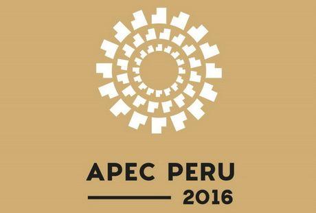Peru chuan bi chuong trinh nghi su day dac trong tuan le cap cao APEC - Anh 1