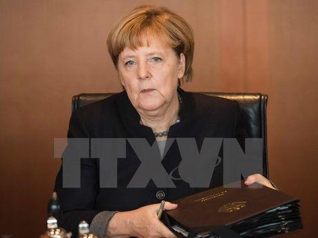 Ba Merkel da goi dien cho Tong thong My dac cu Donald Trump - Anh 1