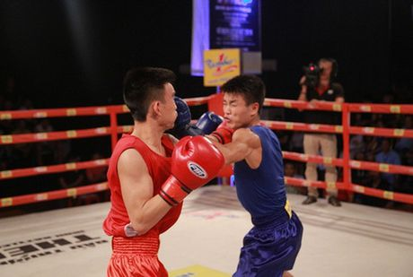 "Chung ket giai ""Vo co truyen, boxing cac VDV xuat sac toan quoc tranh dai vo dich Let`s Viet – Number 1 lan thu IV - 2016 - Anh 3"