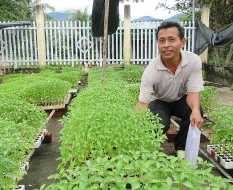 Ninh Thuan phat trien du lich nong nghiep, trang trai - Anh 3