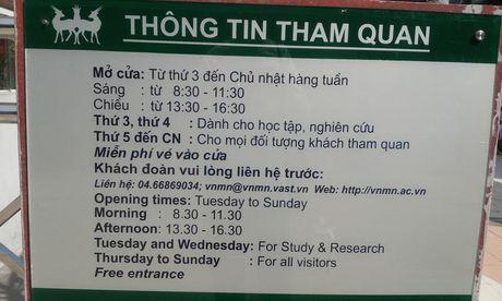 Kham pha Vien bao tang tu nhien, xem phim 3D mien phi giua Ha Noi - Anh 3