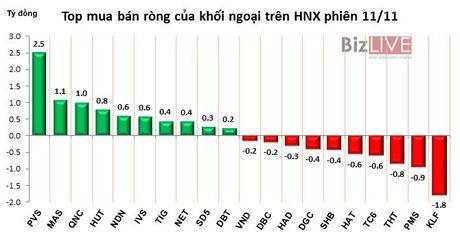 Phien 11/11: Chot loi HPG va VIC, khoi ngoai ban rong hon 74 ty dong - Anh 2