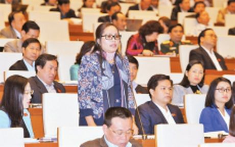 Thong qua Nghi quyet ve ke hoach dau tu cong trung han giai doan 2016-2020 - Anh 1