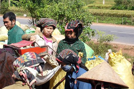 Thoat ngheo o Nam Ke - Anh 1