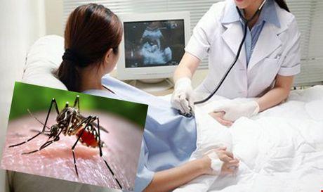 Du phong va giam thieu nguy co tre mac chung dau nho do virut Zika - Anh 1