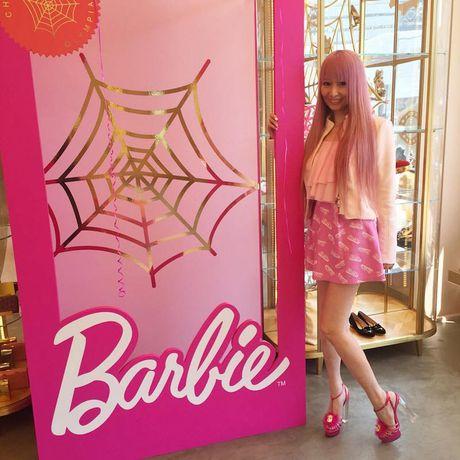 Ngoi nha trang tri ngap bup be Barbie cua mot fan cuong 34 tuoi - Anh 8