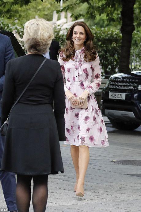 11 mau vay du tiec quyen ru cua cong nuong Kate Middleton - Anh 1
