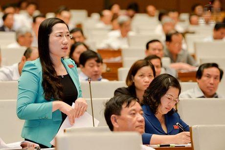 DBQH: Nguoi bi oan khong can yeu cau, Nha nuoc phai xin loi va boi thuong - Anh 1