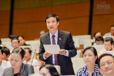 DBQH: Nguoi bi oan khong can yeu cau, Nha nuoc phai xin loi va boi thuong - Anh 2
