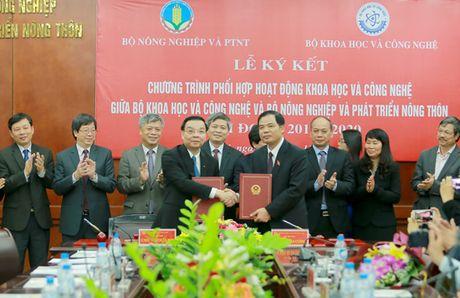 Giai phap KH&CN la khau dot pha tai co cau nong nghiep - Anh 1