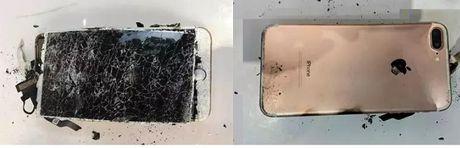 iPhone 7 Plus phat no sau khi bi roi - Anh 2
