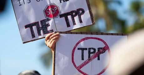 Chinh quyen Tong thong Obama tu bo no luc thong qua TPP - Anh 1