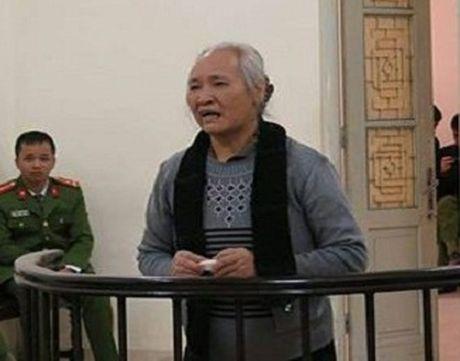 Giam an cho nguoi cam dau dat 5 quan tai phan doi xay cho Ninh Hiep - Anh 1