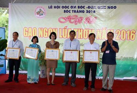 2 giong lua dong ST dat giai cao nhat Hoi thi Gao ngon, lua thom Soc Trang 2016 - Anh 1