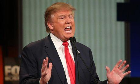 Donald Trump - nguoi dac cu tong thong nho pha vo moi quy tac chinh tri lau doi - Anh 1