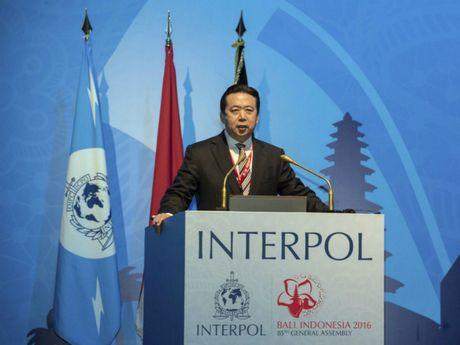 Interpol bo nhiem chu tich nguoi Trung Quoc - Anh 1