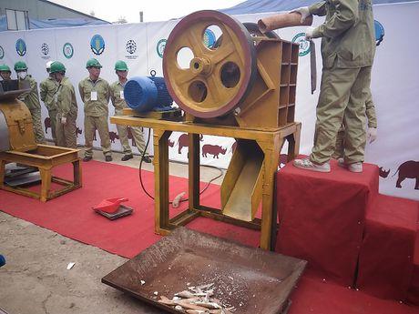Lan dau tien Viet Nam tieu huy hon 2.000 kg nga voi - Anh 6