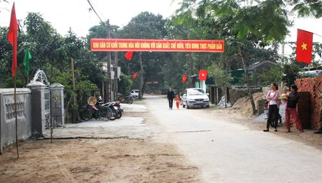 Pho Thu tuong Vuong Dinh Hue du ngay hoi dai doan ket tai Cua Lo - Anh 8